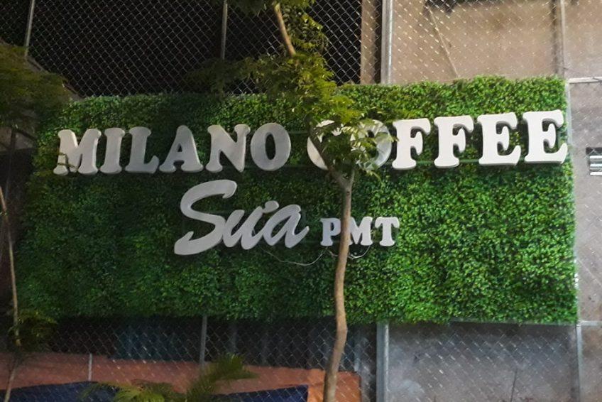 Hình ảnh đại lý 67 - Milano Ninh Thuận